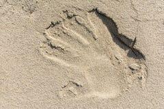 Reflexion der Hand im Sand Stockfoto