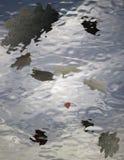 Reflexion der Herbstblätter im Wasser Stockfotos