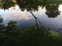 Reflexion der Natur Stockbilder