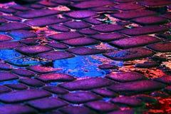 Reflexion der Werbung beleuchtet auf den Steinen der Straße I Stockfotos