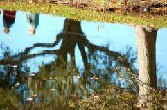 Reflexion des Baums und der Paare auf See Lizenzfreie Stockfotografie