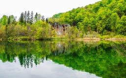 Reflexion des Frühlingswald- und -seewassers Lizenzfreies Stockbild