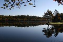 Reflexion in einem geverlassenen See lizenzfreies stockbild
