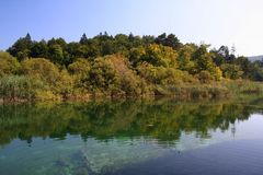 reflexion för lakenationalparkplitvice Arkivfoto