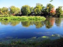 Reflexion i en flod Royaltyfria Bilder