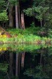 Reflexion i en sjö i sjöområdet, England Arkivfoton