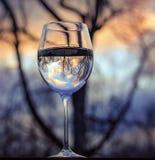Reflexion i ett vinexponeringsglas Fotografering för Bildbyråer