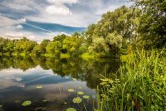 Reflexion i Farlows sjön Royaltyfri Fotografi