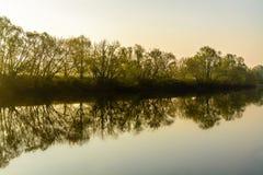 Reflexion i floden royaltyfria foton