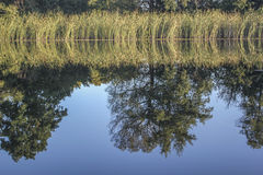 Reflexion i floden Royaltyfri Fotografi