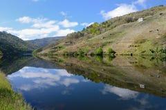 Reflexion i floden Arkivbild