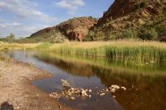 Reflexion i lugnt vatten, Glen Helen Gorge Arkivbild