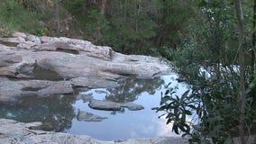 Reflexion i pölar på granit med skogen arkivfilmer