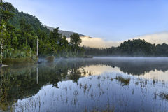 Reflexion i sjön Kaniere arkivfoto