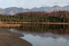 Reflexion i vatten Fotografering för Bildbyråer