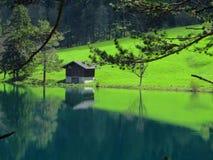 Reflexion im blauen See Stockbilder