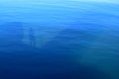 Reflexion im Ozean Stockfotos