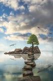 Reflexion Royalty Free Stock Photo