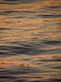 Reflexion, Kräuselung auf Goldmeer Stockfoto