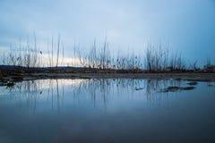 Reflexion at the lake. Scene stock photo