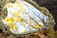 Reflexion in a mirror of autumn leaves on maple branches. Reflexion in a mirror of autumn leaves, an autumn mirror Royalty Free Stock Images