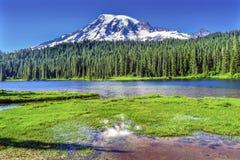 Reflexion montering Rainier National Park Washington för sjöparadis Arkivfoton