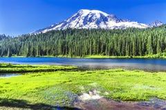 Reflexion montering Rainier National Park Washington för sjöparadis Arkivbilder