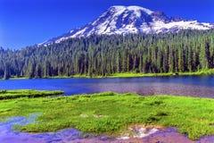 Reflexion montering Rainier National Park Washington för sjöparadis Royaltyfri Fotografi