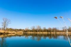 Reflexion på blåttstillhetsjön Fotografering för Bildbyråer