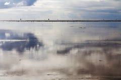 Reflexion på ett hav i Nederländerna Royaltyfri Fotografi