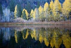 Reflexion på juni den östliga toppiga bergskedjan Kalifornien för sjö på nedgångafton royaltyfri foto