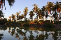Reflexion på sötvattensjön royaltyfria bilder