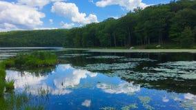 Reflexion på sju sjöar i den Harrisman delstatsparken, New York Royaltyfri Bild