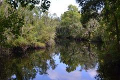 Reflexion på Thomas Creek Arkivfoton