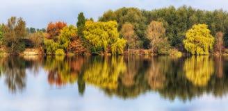 Reflexion Pittoresk reflexion av träd Royaltyfri Bild