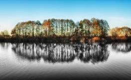 Reflexion Pittoresk reflexion av träd i floden Royaltyfria Foton