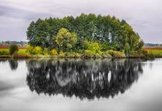 Reflexion Pittoresk reflexion av träd i floden Royaltyfri Fotografi