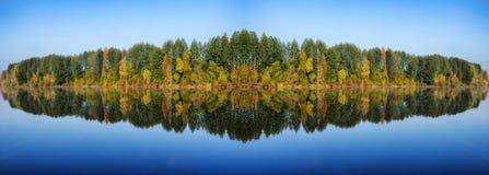 Reflexion Pittoresk reflexion av träd i floden Arkivbilder