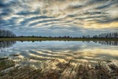 Reflexion Pittoresk reflexion av träd i floden Arkivfoto