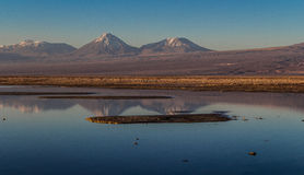 Reflexion on salt lake atacama Royalty Free Stock Image