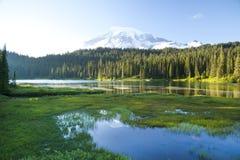 Reflexion sjö och monteringsRanier vulkan Arkivbild
