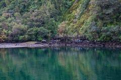 Reflexion sjö på Milford Sound, Fiordland nationalpark, Nya Zeeland arkivbild
