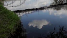 Reflexion und Brücken stock video