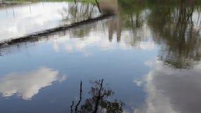 Reflexion und Brücken stock video footage