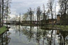 Reflexion von Bäumen lizenzfreie stockfotografie
