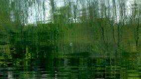 Reflexion von Bäumen 2 stock video