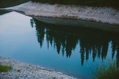 Reflexion von Bäumen im Fluss Lizenzfreies Stockbild