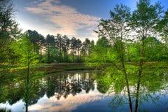 Reflexion von einem Teich Stockfoto
