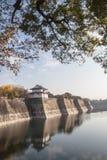 Reflexion von Osaka-Schloss Stockfotos