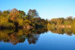 Reflexion zum See des Herbstes stockbilder